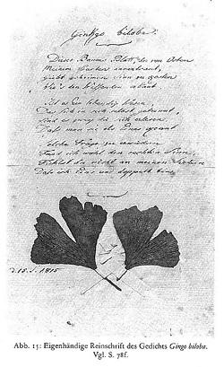ゲーテ詩集より「銀杏の葉」