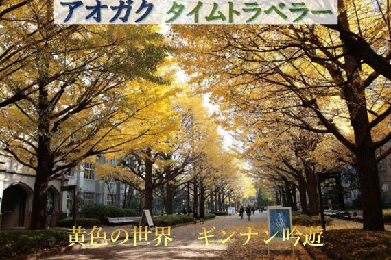 黄色の世界 ギンナン吟遊【アオガクタイムトラベラー】